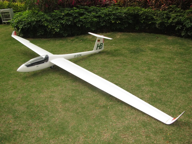 LS8 4M Electric Glider W/Electric Airbrake